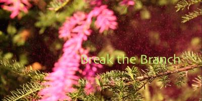 Break the Branch